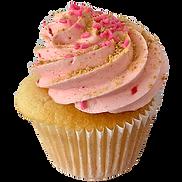DNSD Strawberry shortcake.png