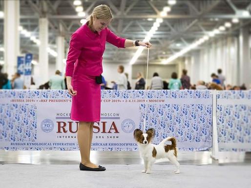 """IDS """"Russia-2019"""""""