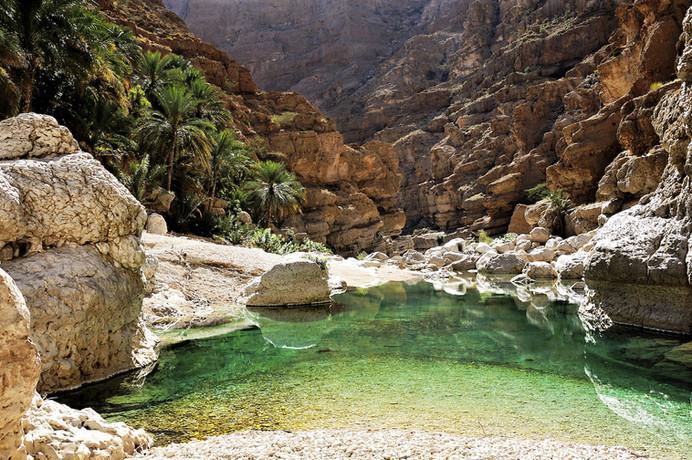 Wadi Tiwi & Wadi Shab