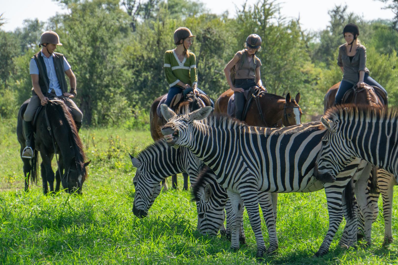 Stanley & Livingstone Horse Ride Safari