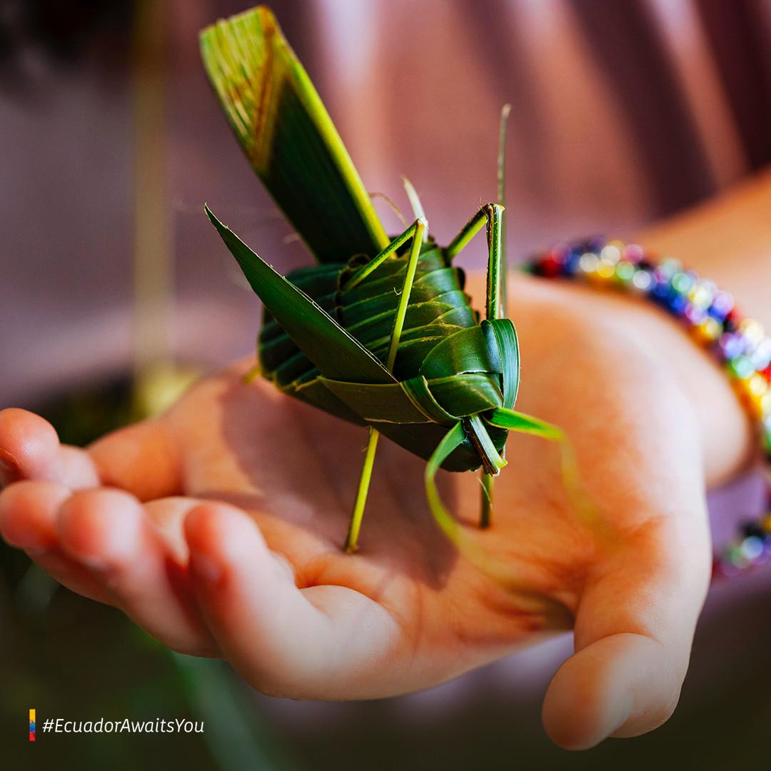 Amazon handicrafts