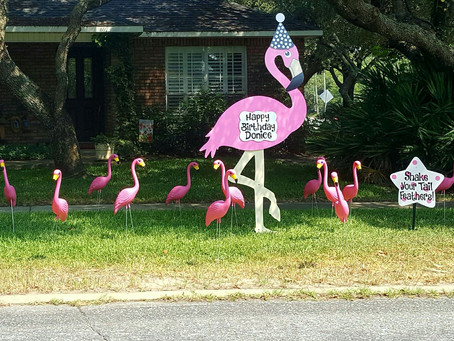 Time to Flock your Yard! Orlando Lawn Sign Rentals - Stork Lady Celebrations