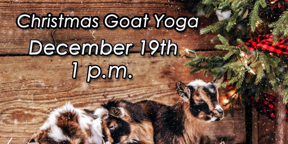 Christmas Goat Yoga