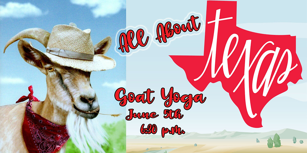 All About Texas Goat Yoga