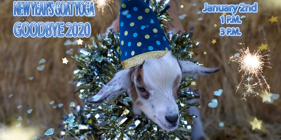 GOODBYE 2020 GOAT YOGA 3 P.M. CLASS