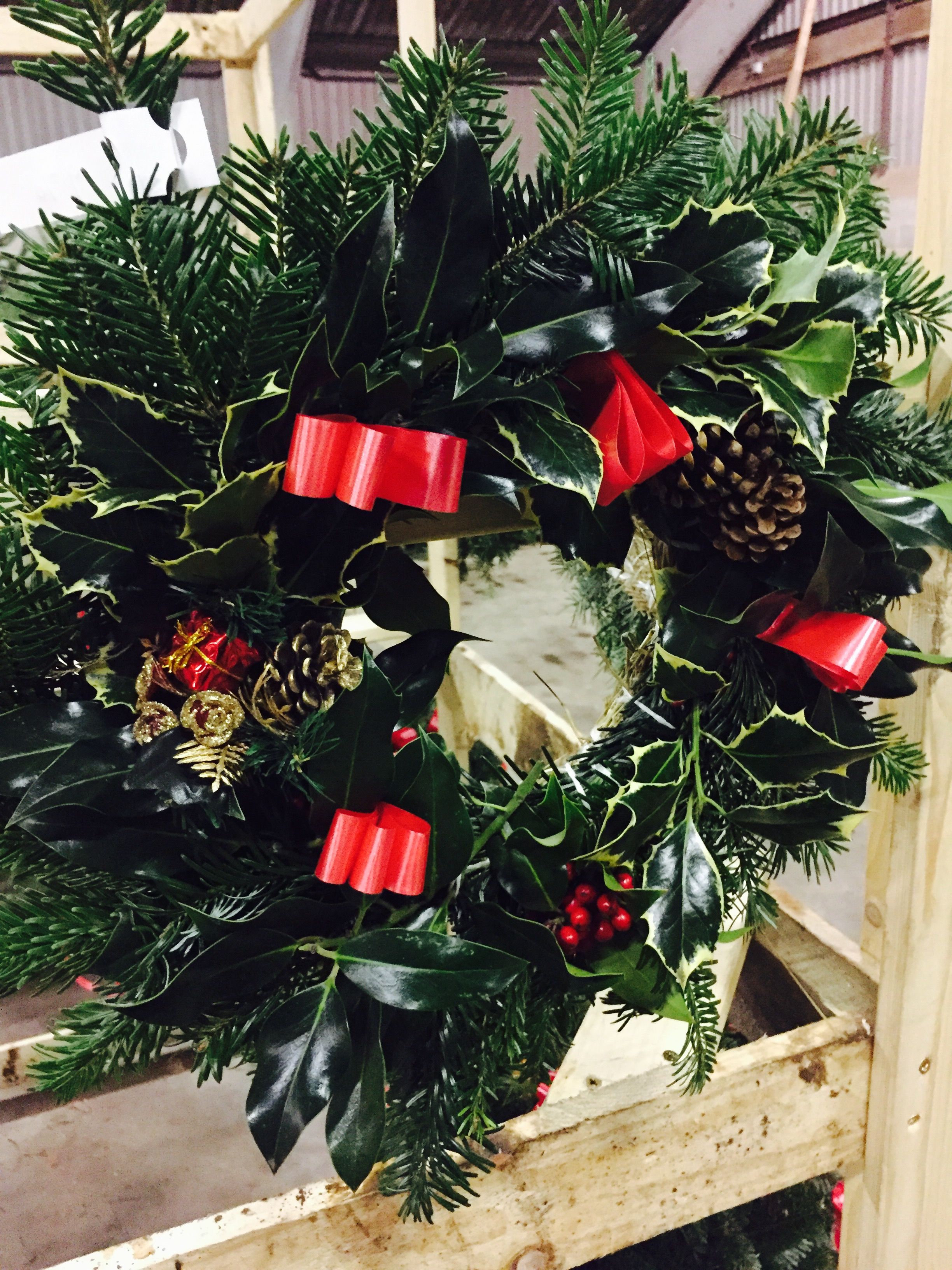 Hull Christmas Trees Wreath