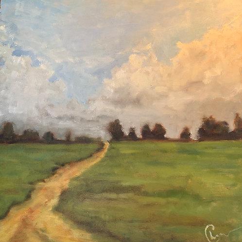 "Simple Path 12X12"""
