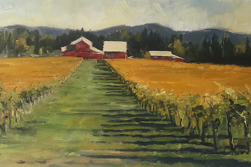 """Hawks View Vineyard in Autumn 12X24"""""""