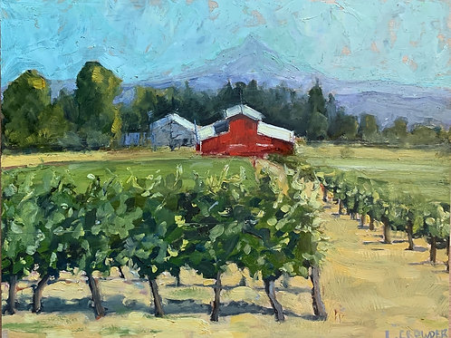 Early Autumn Vineyard 11X14""