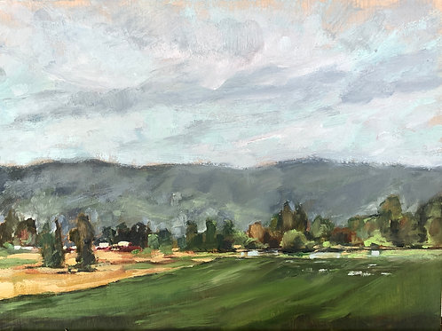 "Sauvie Island in the Spring 11X14"" SOLD"