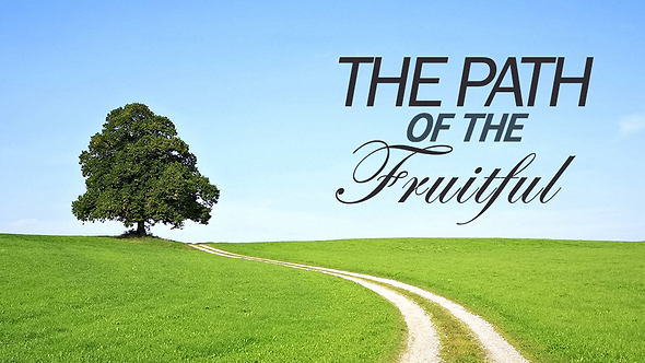The Path Of The Fruitful - ( CD )