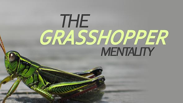 The Grasshopper Mentality - 3 PT ( CD ) Series