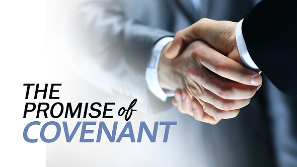 THE PROMISE OF COVENANT - 4 PT( MP3 ) SERIES