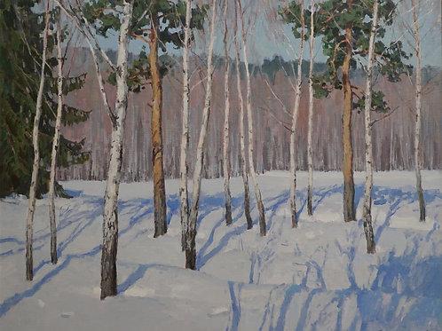 """Картина """"Молодой лес"""", 60 х 70 см., холст, масло"""