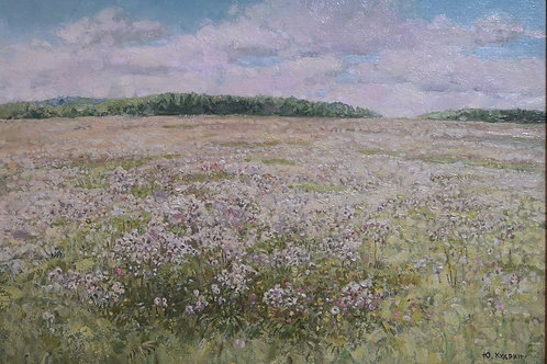 "Картина ""Белое поле"", 50х35, холст, масло"
