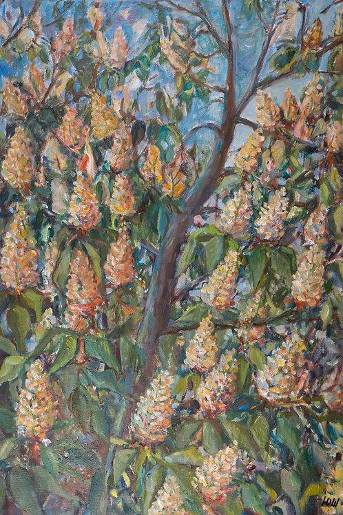 """Картина """"Каштан в Анином окне"""", 60 х 40 см, холст, масло"""