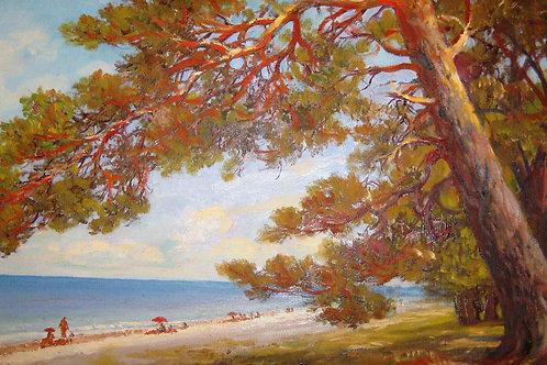 "Картина ""Пицунда. Сосны на берегу"", 1954 год, 49 х 85 см, холст, масло"