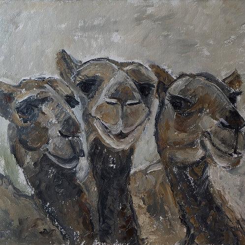 "Картина ""Три верблюда"""