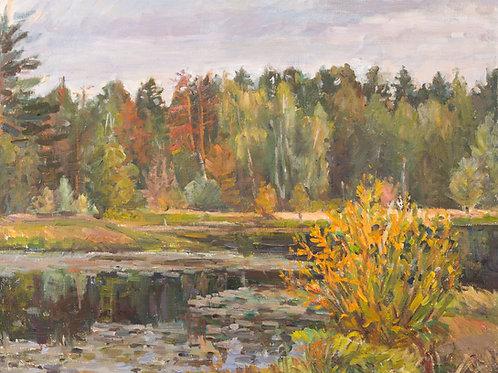 "Картина ""Дачное озеро"", 30 х 40 см, холст, масло"
