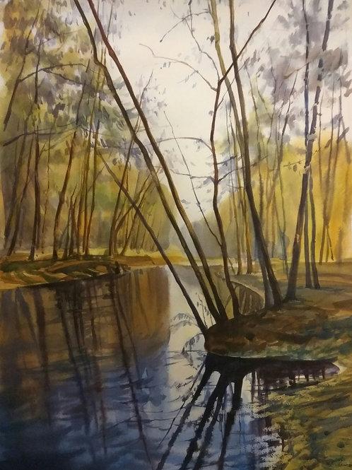 Картина «Лесное озеро», 36.5 х 54.5 см, бумага, акварель