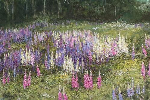 """Картина """"Цветущие люпины"""", 30х50, холст, масло"""