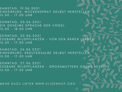 Kurse beim Elisenhof e.V. können endlich stattfinden!