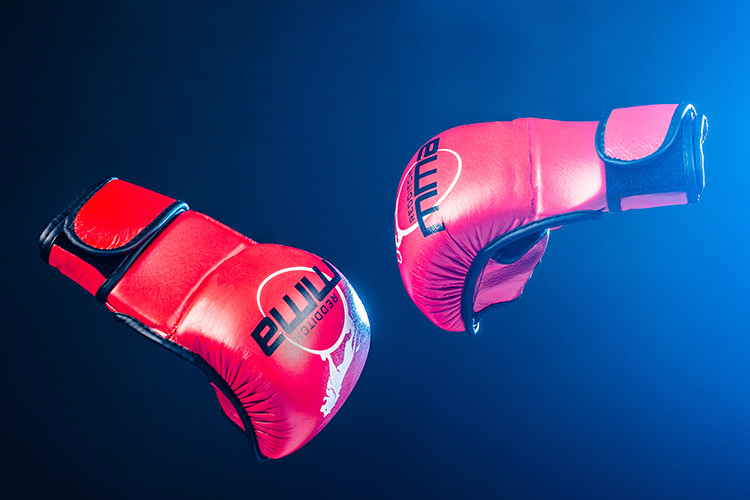 Redditch MMA Gloves