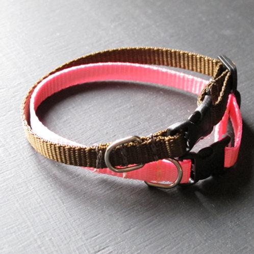 Baby Dog Collar