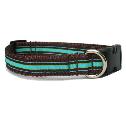 Bahama Stripe Dog Collar