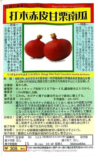 1164-打木赤皮甘栗かぼちゃ-01.jpg