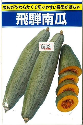 0000705001 飛騨南瓜(固定種・在来種)_つる新種苗-01.jpg