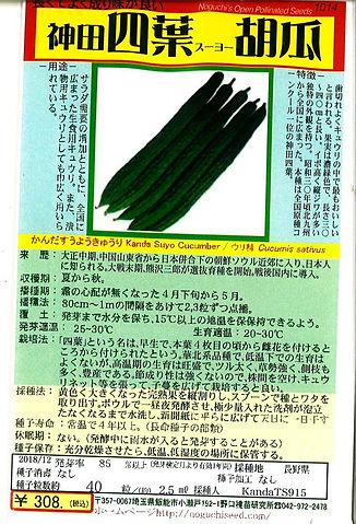 1014-神田四葉きゅうり-01.jpg
