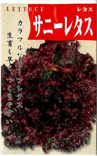 1051_サニーレタス-01.jpg