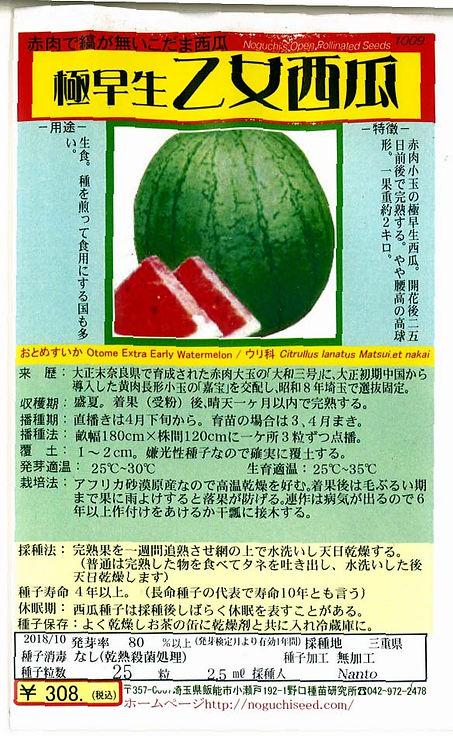 1009_極早生乙女西瓜-01.jpg