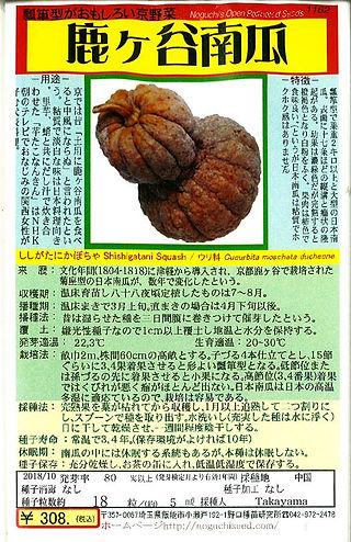 1162-鹿ケ谷南瓜-01.jpg
