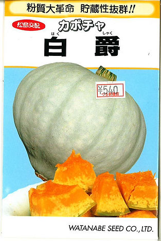 0000700801 伯爵南瓜(F1)_つる新種苗-01.jpg
