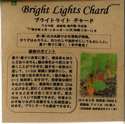 0121_ブライトライト チャード_たねの森-01.jpg