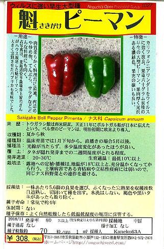 1027-魁ピーマン-01.jpg