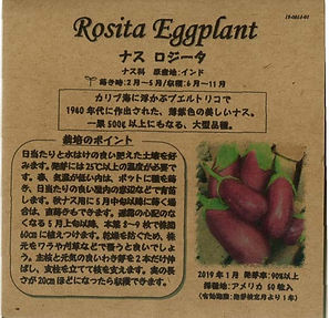 0014_ナス ロジータ_たねの森-01.jpg