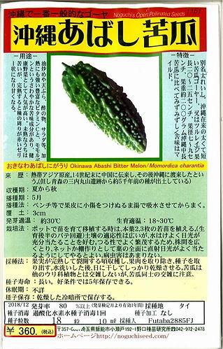 1151_沖縄あばし苦瓜-01.jpg