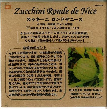 0038_ズッキーニ ロンドデニース_たねの森-01.jpg