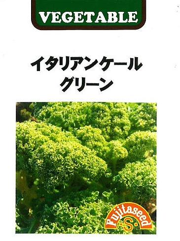 G-10 イタリアンケール グリーン_藤田タネ-01.jpg