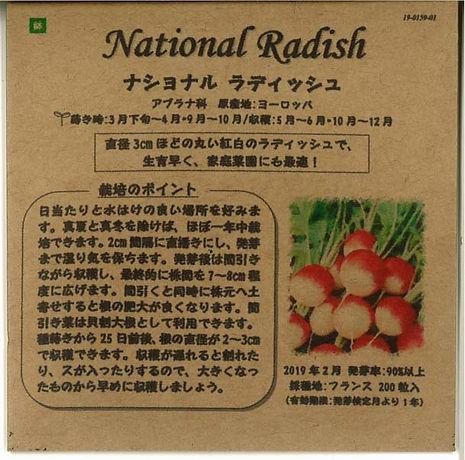 0159_ナショナル ラディッシュ_たねの森-01.jpg