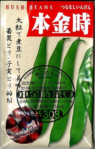 1144_本金時菜豆-01.jpg
