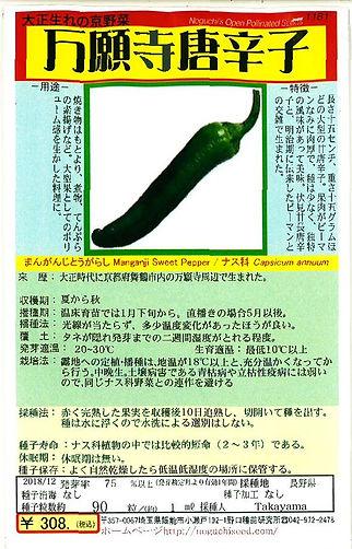 1181-万願寺とうがらし-01.jpg