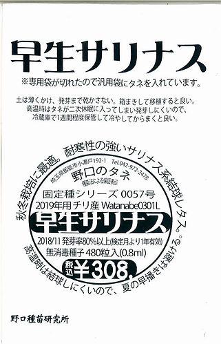 0057_レタス・早生サリナス-01.jpg