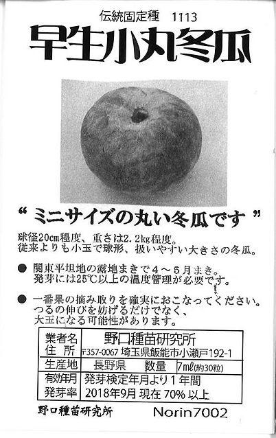 1113-早生小丸とうがん-01.jpg
