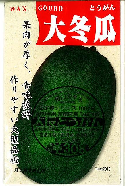 1007-大長とうがん-01.jpg