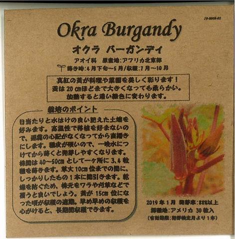 0068_オクラ バーガンデイ_たねの森-01.jpg