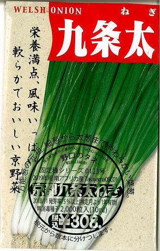 0123_京都九条太葱-01.jpg
